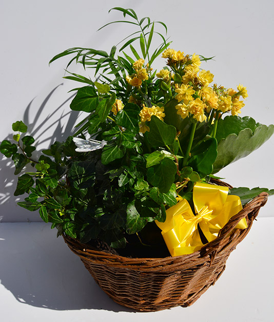 Simply Flowers Planted Basket 1